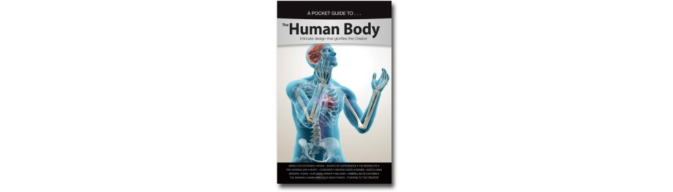The Human Body Pocket Guide