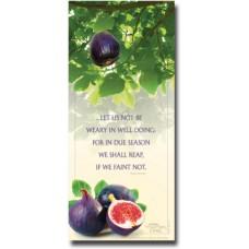 Not Be Weary - WitnessWord Card