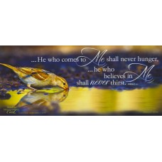 Shall Never Thirst - WitnessWord Card